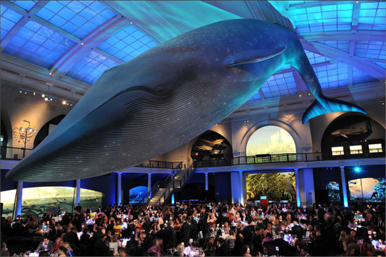 American Museum of Natural History Presents: The Spring Lunch: Science, Society, and Our Environment