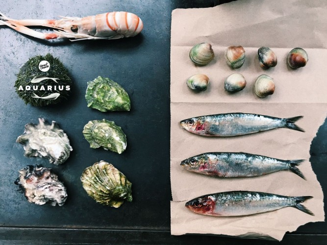 2nd Annual Secret SummerAquarius: The Nation's Only Sustainable Seafood Festival