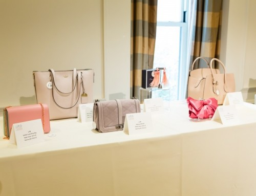 Ninth Annual Lupus Handbag Luncheon and Silent Auction