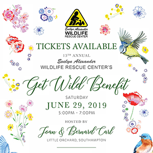 13th Annual Get Wild Benefit