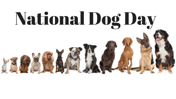 National Dog Day Yappy Hour - Adopt a Pup at Hotel Indigo LES (8.26)