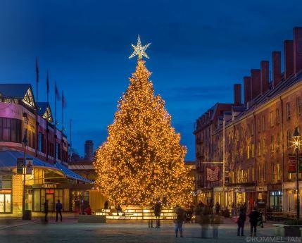 Seaport Holiday Tree Lighting