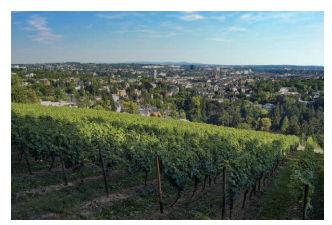germany wine region